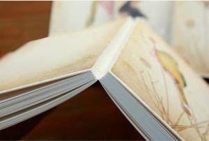裸脊锁线装订的书籍
