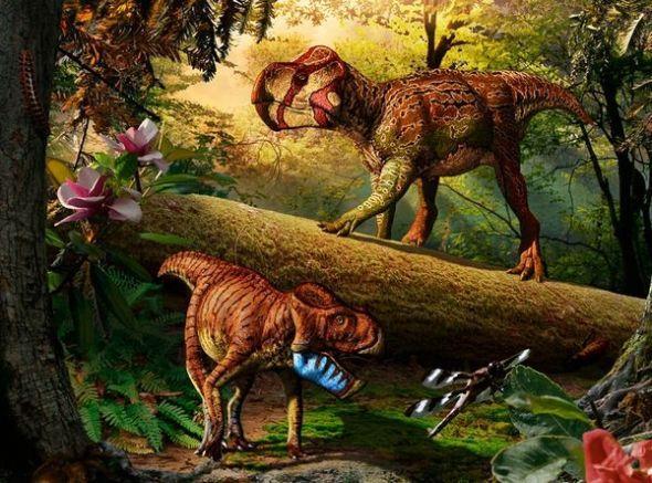 白垩纪晚期,是恐龙的一种,属于角足龙类,分布在中国蒙古,是草食性动物