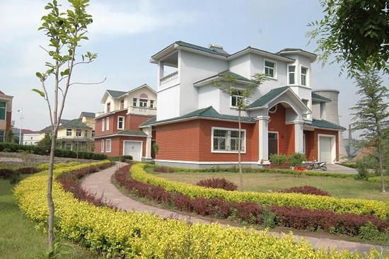 上海郊区紫色别墅群