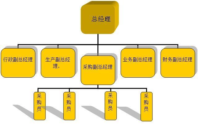 这种组织结构形式是把企业管理机构和人员分为两类,一类是直线领导