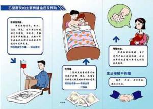 乙肝传染途径和预防_乙肝病毒传播途径 - 搜狗百科