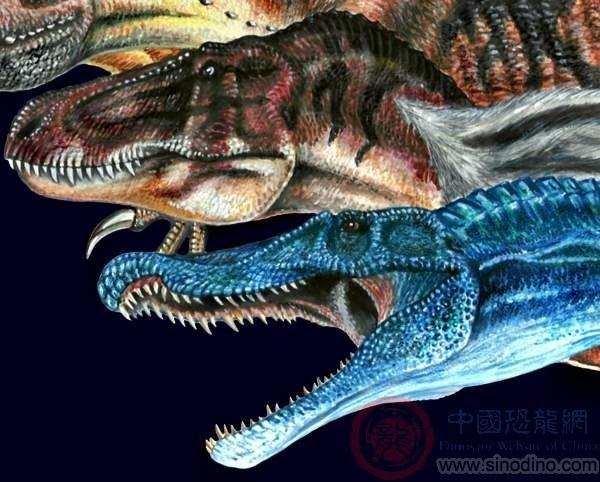 动物 恐龙 600_482