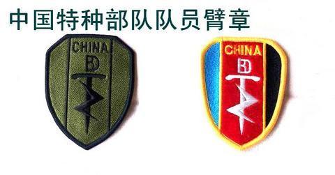 中国特种部队队员臂章图片
