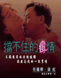 翁虹任达华演的电影_挡不住的风情(1993年香港电影) - 搜狗百科