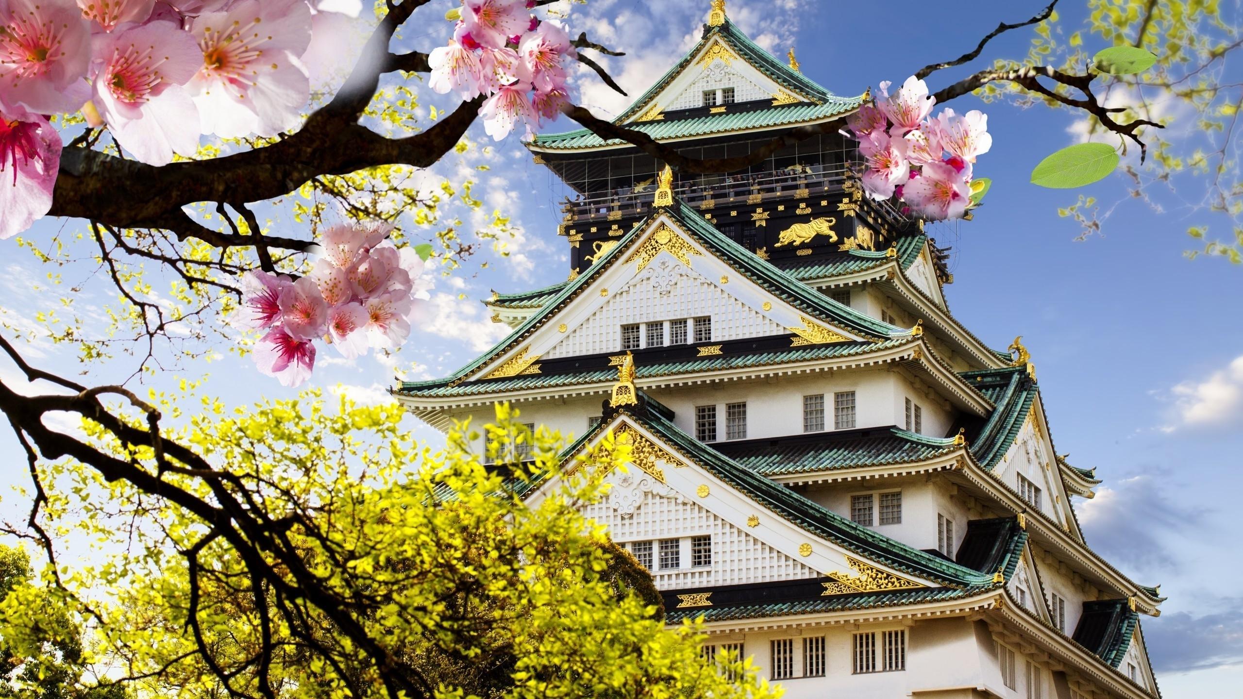 日本动漫房子图片