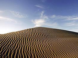 土地沙漠化