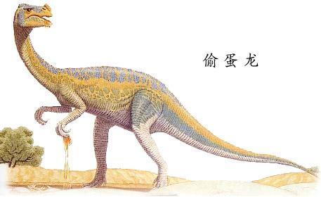 恐龙(蜥形纲史前动物)