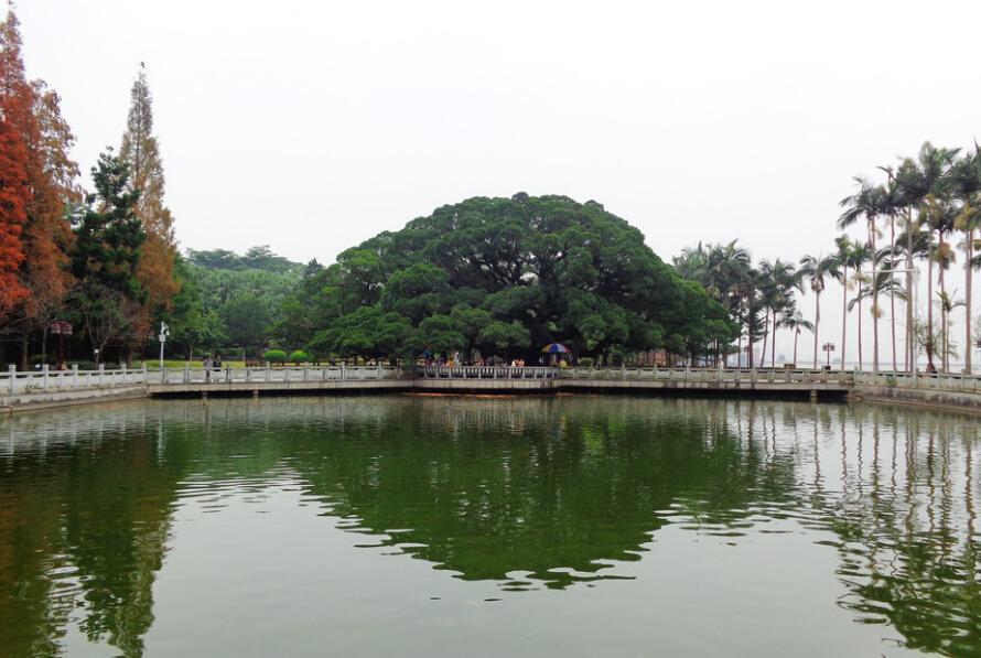 福州三日游 第1天:福州森林公园,福州西湖公园,左海公园,福州江滨