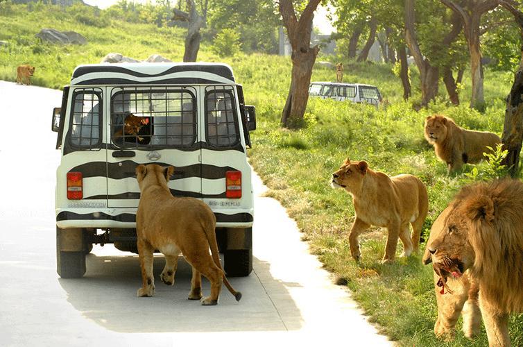 西安野生动物园
