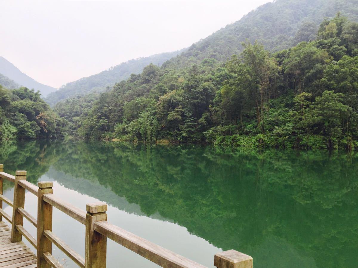 王子山森林公园门票_王子山省级森林公园