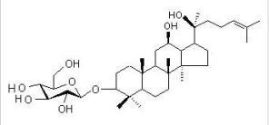 人参皂苷rh2_人参皂苷Rh2 - 搜狗百科