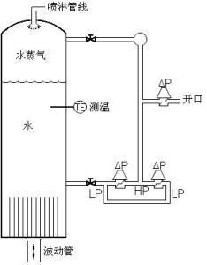 压水堆核电厂的稳压器水位测量