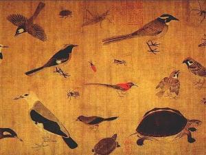 五代 黄荃《写生珍禽图》