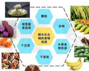 营养素_营养素 - 搜狗百科