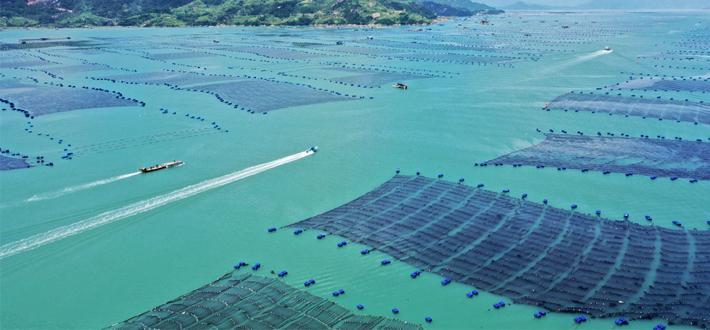 福建霞浦:清海擴航在行動